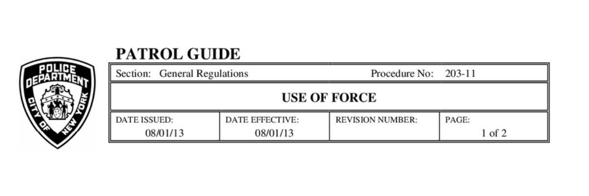 Read the NYPD's Use of Force policy