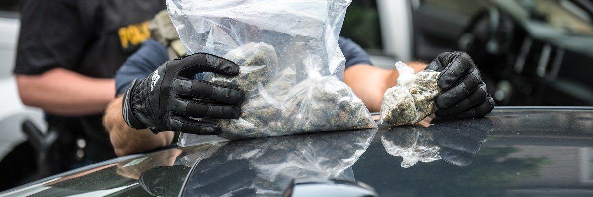 "Under ""broken windows"" policy, marijuana citations in New York rose a thousandfold"