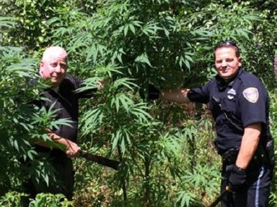 "Raid on grandmother's pot plant funded by federal ""Cannabis Eradication"" program"