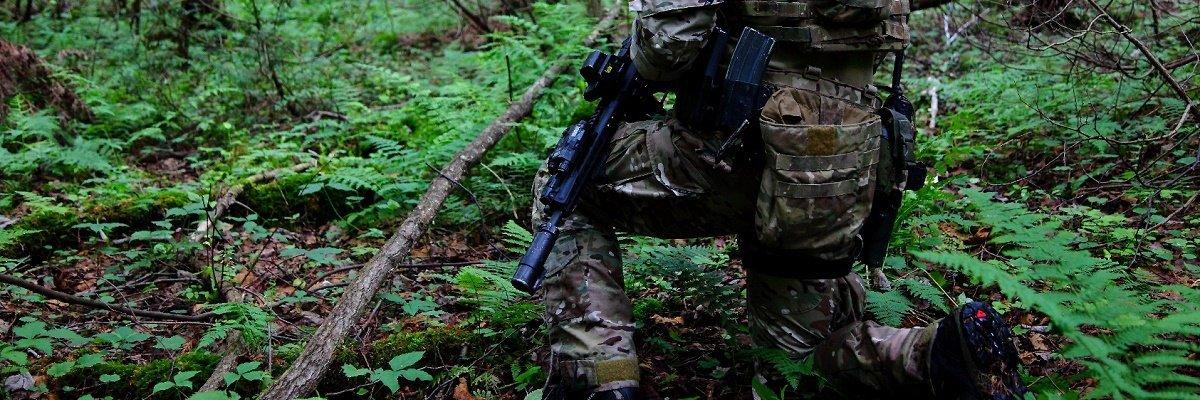 Homeland Security downplays threat of domestic terrorism