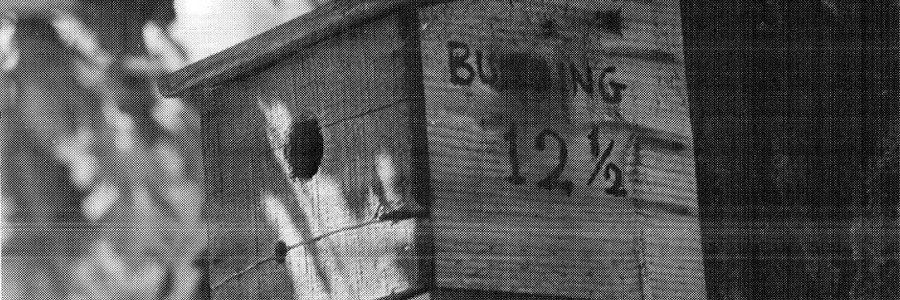 Why did the CIA classify a birdhouse?