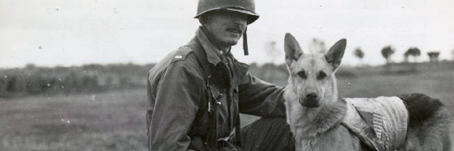 The CIA's dogs of war