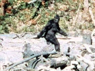 The FBI releases its file on Bigfoot