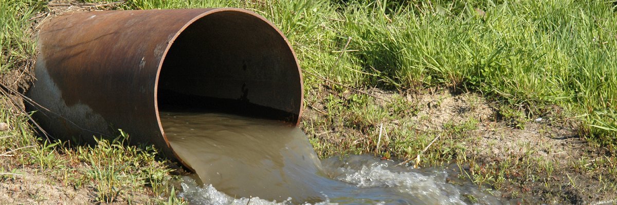 How much sewage is your town dumping into Massachusetts waterways?