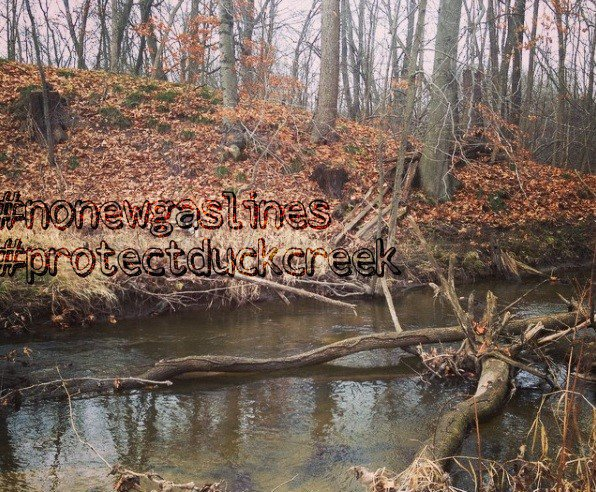 Caledonia Pipeline Project - Protect Duck Creek